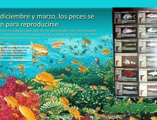 Centros de interpretación de las Islas de Guanaja y Utila en la República de Honduras.